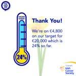 Irish Cancer Society How does my money help 1080 x 1080 Instagram 24 percent